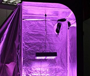 Grow Tent Setup & VIPARSPECTRA V600 | 600 WATTS | ESTAGECRAFT