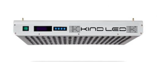 KIND LED K5 XL1000 | 1000 WATTS