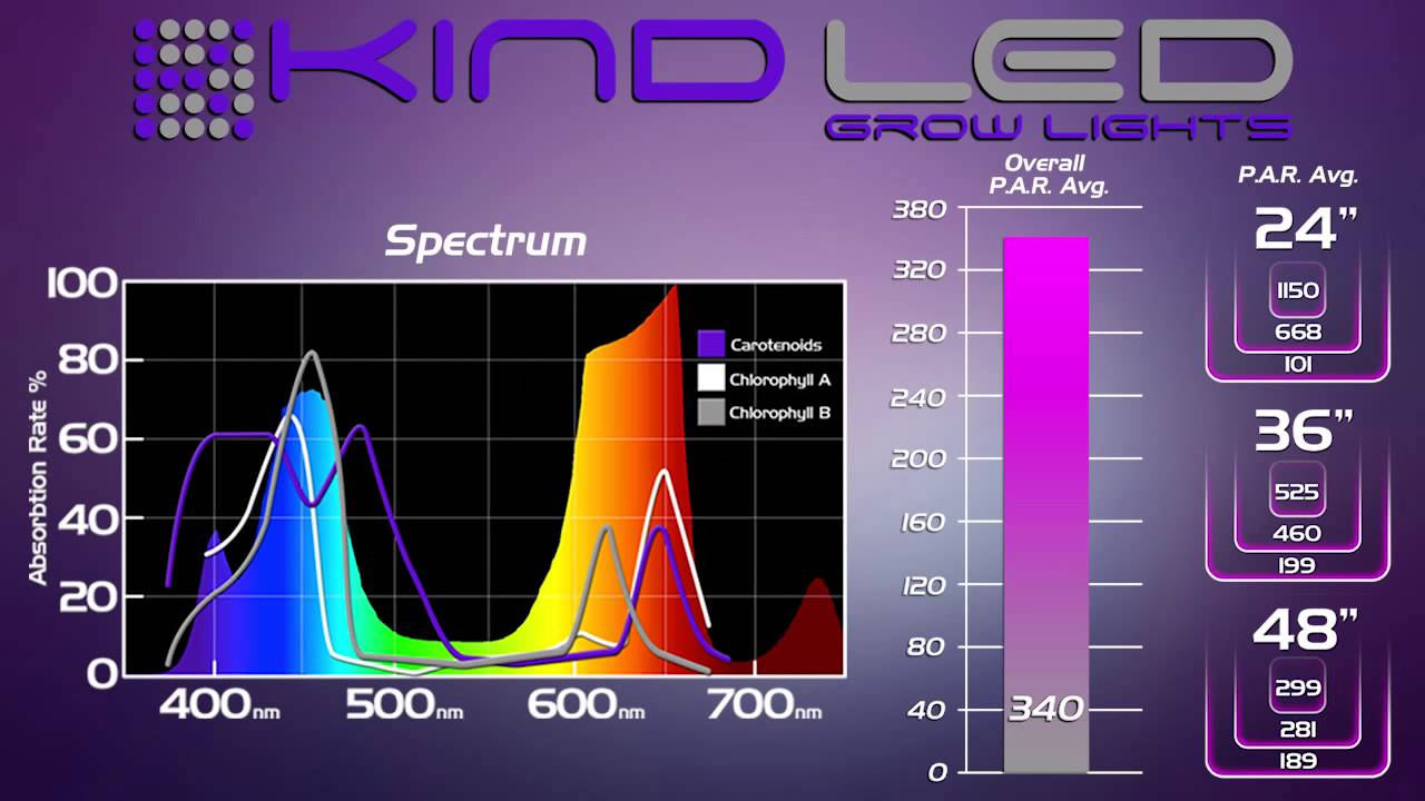 KIND K5 XL750 Spectrum