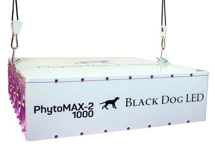 Black Dog LED PhytoMAX-2 1000 Grow Lights | High Yield Full Spectrum Indoor Grow Light with BONUS Quick Start Guide