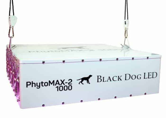Black Dog LED PhytoMAX-2 800 Grow Lights | High Yield Full Spectrum Indoor Grow Light with BONUS Quick Start Guide